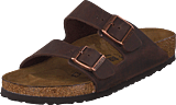 Birkenstock - Arizona Habana Regular Brown