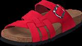 Scholl - Carsol Red