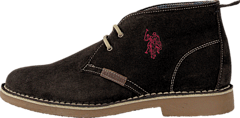 U.S. Polo Assn - Amadeus 6 Dark Brown