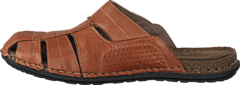 Ten Points - Colin 741051 Brown