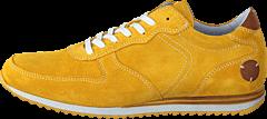 Dahlin - Seattle Yellow