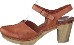 Ten Points - Atena 743001 Brown