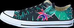 Converse - All Star Tropical Print Ox Menta/Black